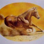 gaetano vicari cavallo al sole
